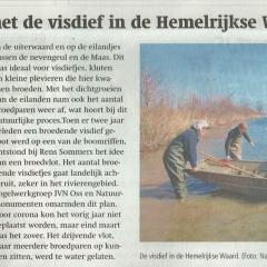 2021-04-07-BD-Hemelrijkse-Waard-broedplaats-voor-visdief