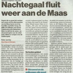 2021-05-01-BD-Nachtegaal-fluit-weer-aan-de-Maas